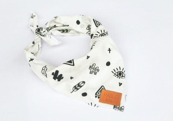 Pablo & Co Indie Pup Dog Bandana 2