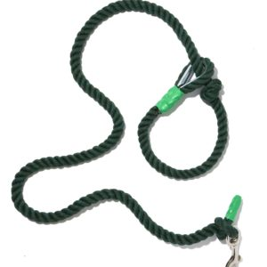 Wagwear Nautical Knot Dog Leash - Green